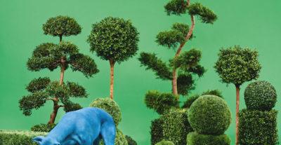 Snoop Dogg domani a Napoli per presentare dal vivo il suo ultimo album, Bush