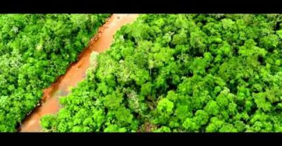 Due clip tratte dal film The Green Inferno