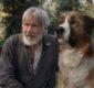 Il Richiamo della Foresta, torna sul grande schermo la storia del cane Buck. Con Harrison Ford