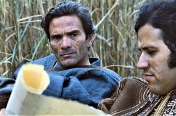 Nuova edizione de Il Decameron di Pier Paolo Pasolini con CG Entertainment