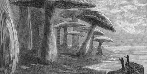 Viaggi al Centro della Terra – dal libro di J. Verne al cinema