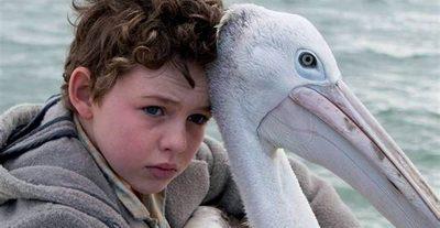 Storm Boy – Il ragazzo che sapeva volare di Shawn Seet – Recensione