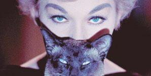 Gatti nel cinema – Miao, si gira!  – 1 parte