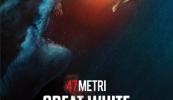 47 Metri: Great White dal 30 settembre al cinema